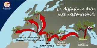 L'origine della vite e del vino