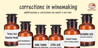correzione-additivazione-vino