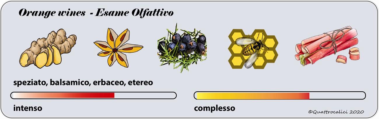 degustazione orange wines olfattivo