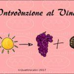 introduzione-al-vino