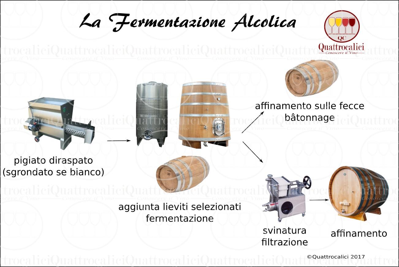fermentazione-alcolica