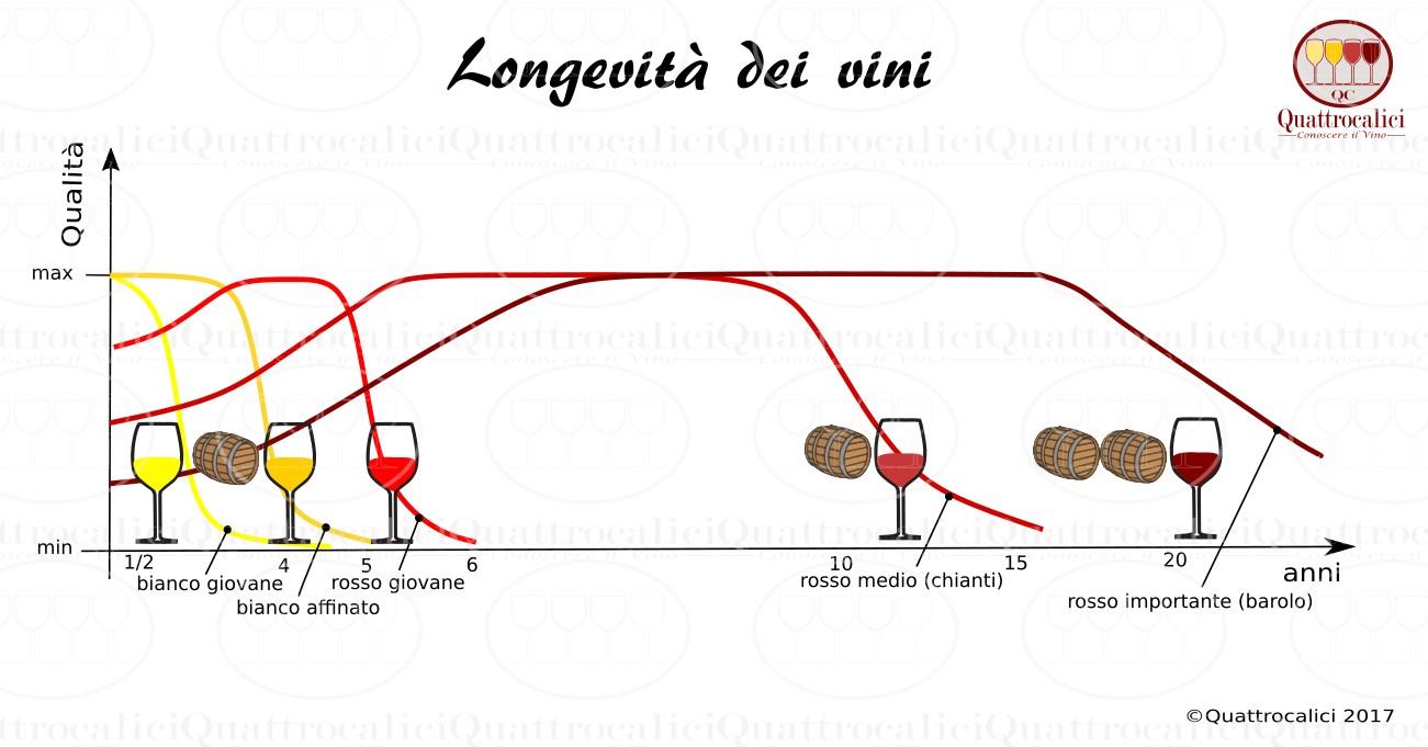 longevità vini