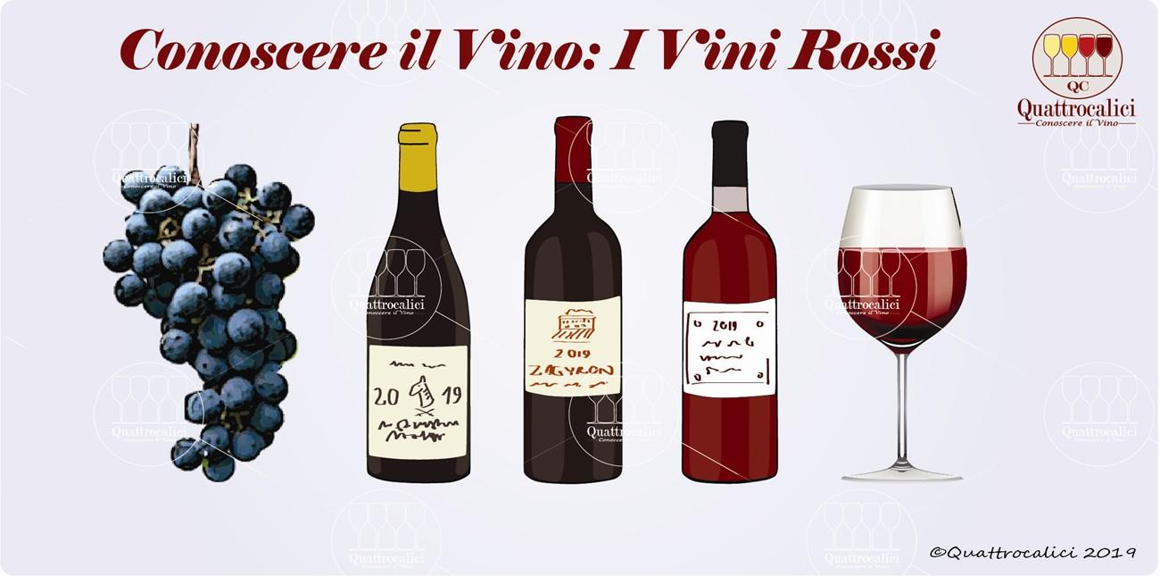 conoscere i vini rossi