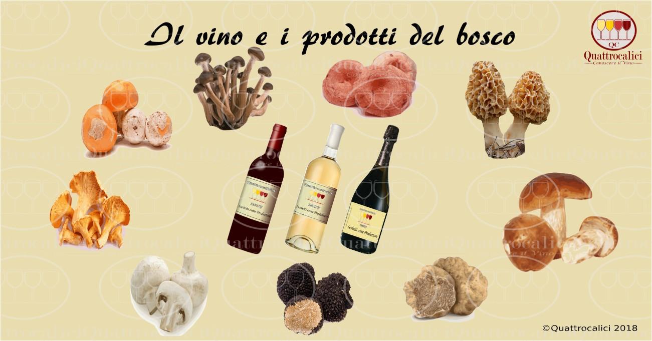 vino abbinamento funghi tartufi