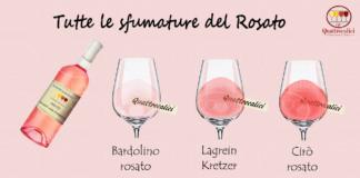 I vini rosati e le loro caratteristiche
