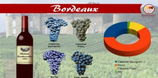 bordeaux vino
