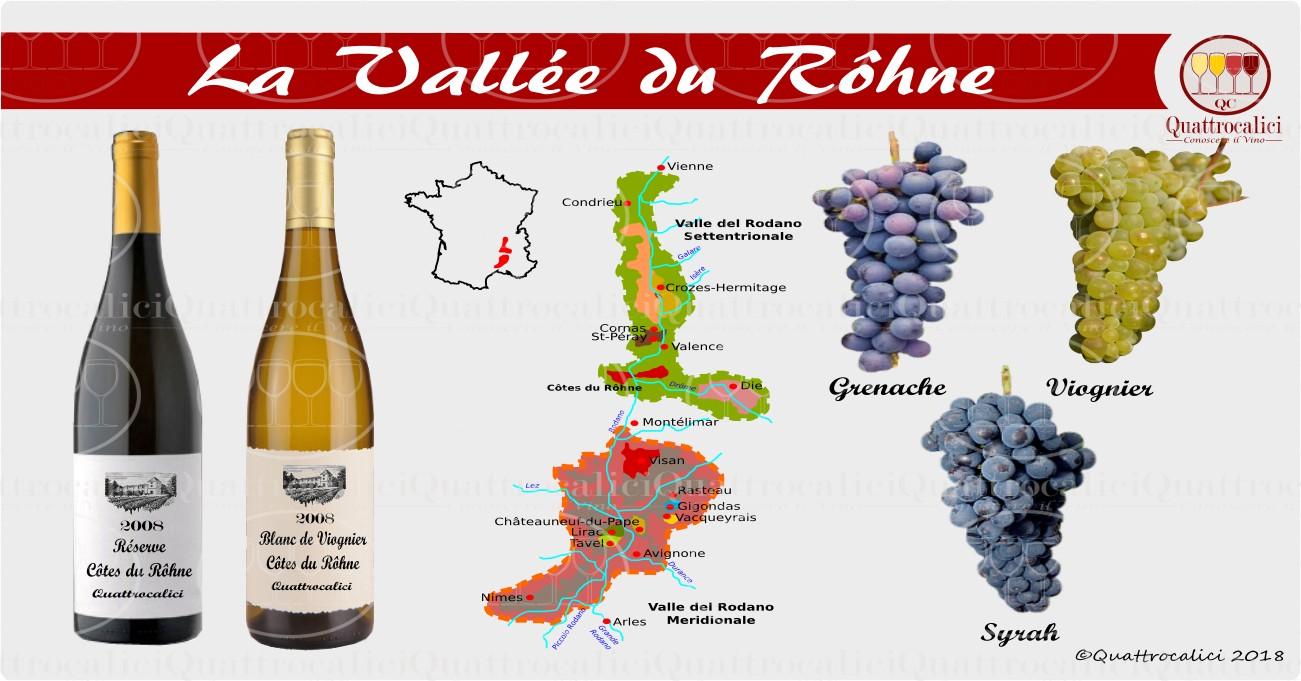 rodano-vini