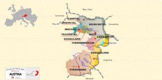 L'Austria e il vino