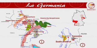 La Germania e il vino