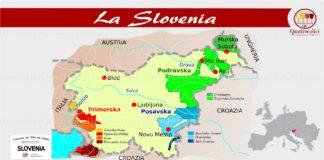 La Slovenia e i vini sloveni