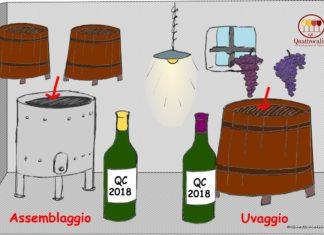 uvaggio e assemblaggio nei vini