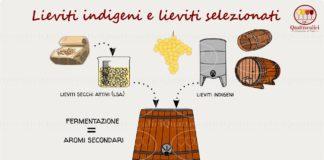 lieviti indigeni e lieviti selezionati