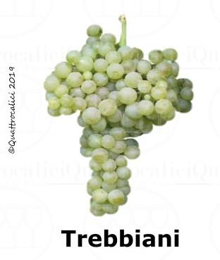 Trebbiani - Famiglia di Vitigni