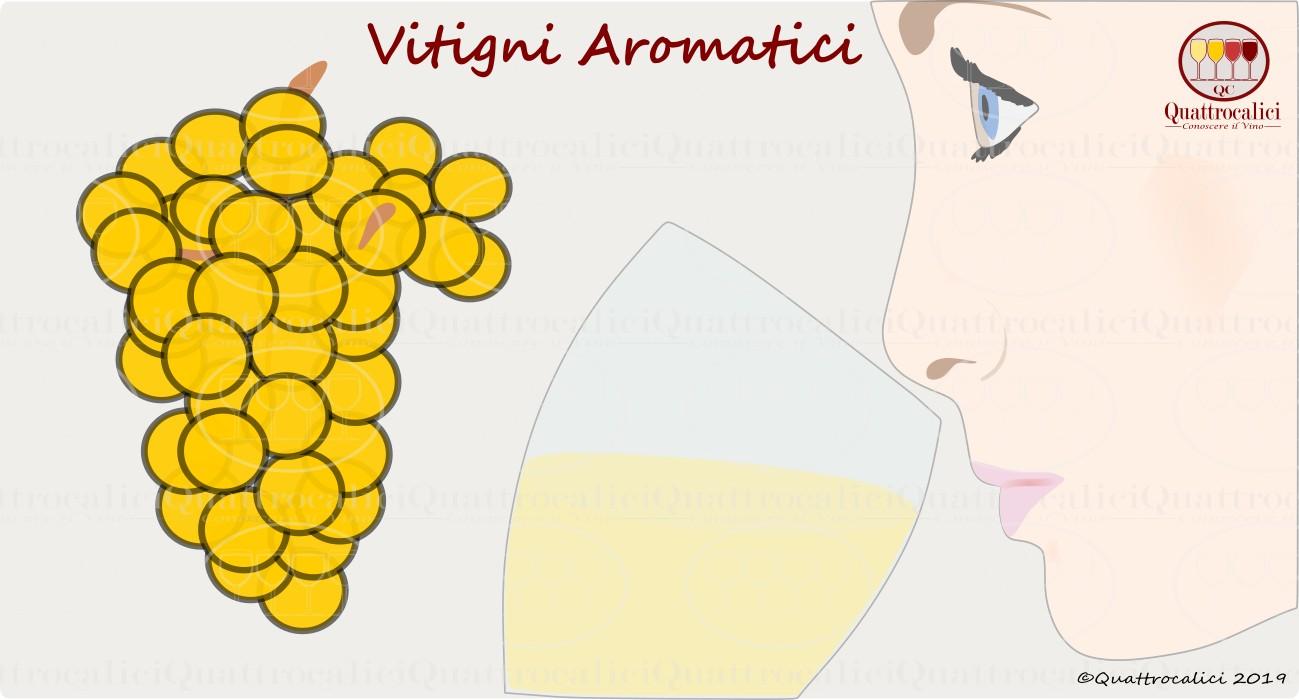 I Vitigni Aromatici