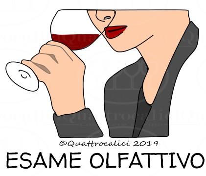 Degustazione del vino: Esame Olfattivo