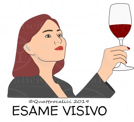 La Degustazione del vino: Esame Visivo