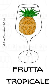 I profumi del vino: frutti rossi