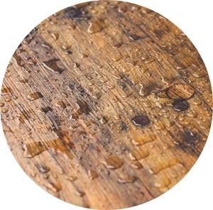Il profumo di legno bagnato nei vini