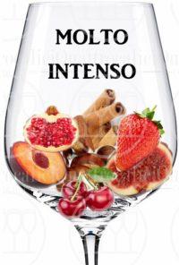 vino molto intenso