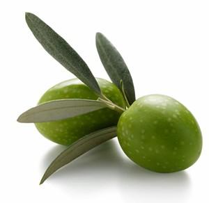 Il profumo di olive verdi nei vini