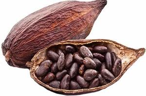 Il profumo di cacao nel vino