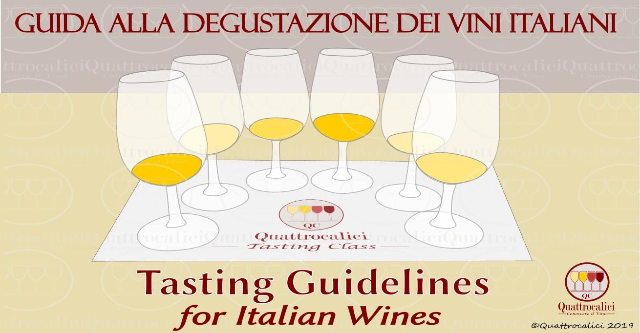 La degustazione dei vini italiani