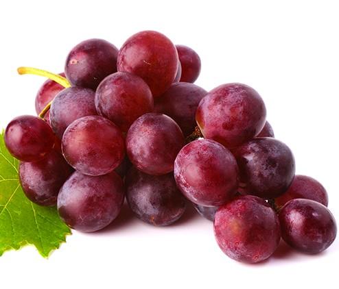 Il profumo di uva rossa nei vini