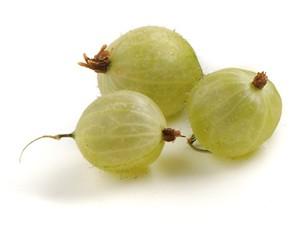 Il profumo di uva spina nei vini