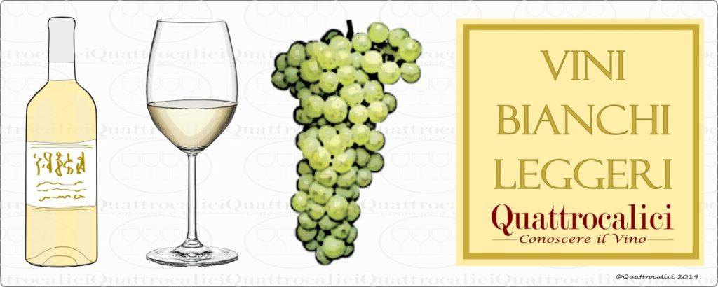 guida-acquisto-vini-bianchi-leggeri