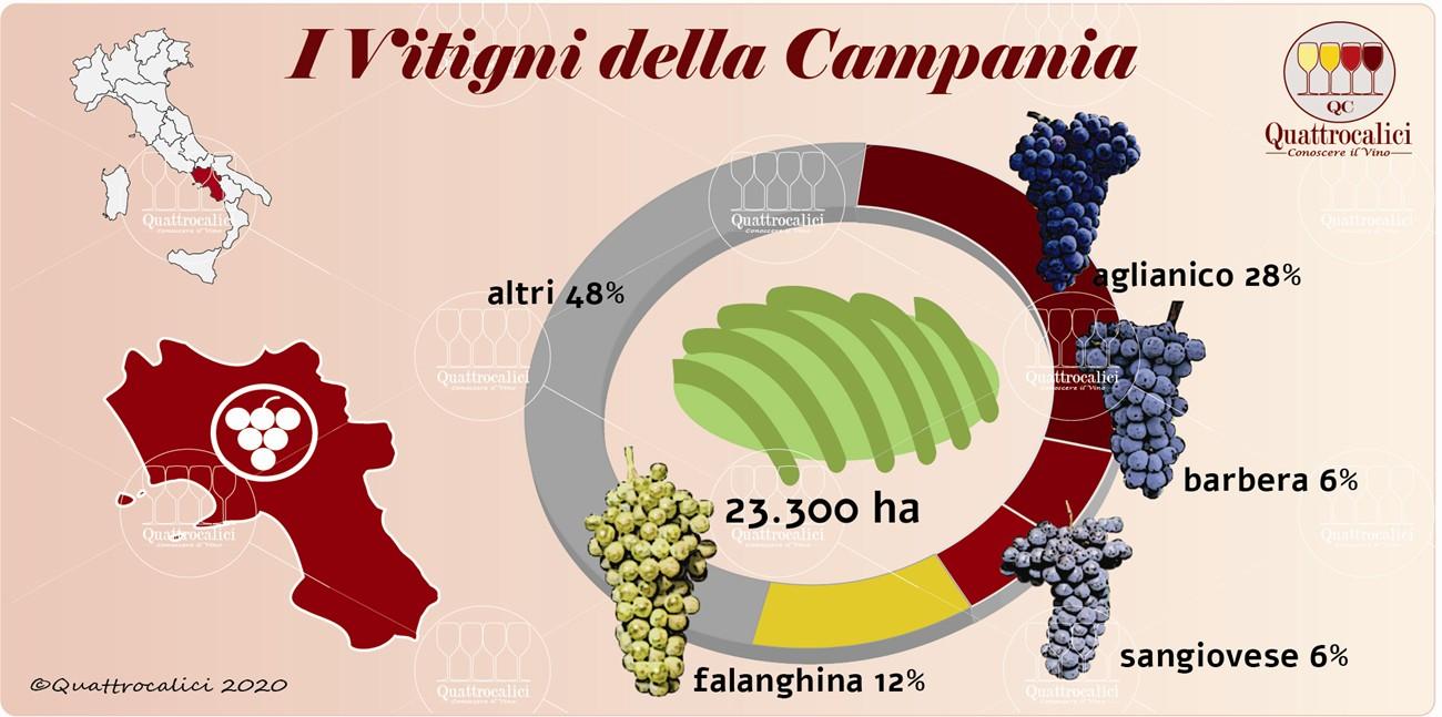 i vitigni della campania