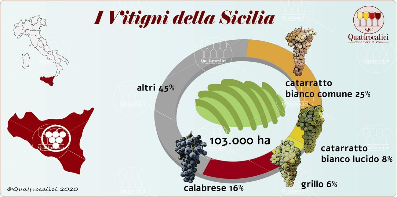 i vitigni della sicilia