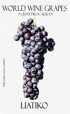 liatiko vitigno