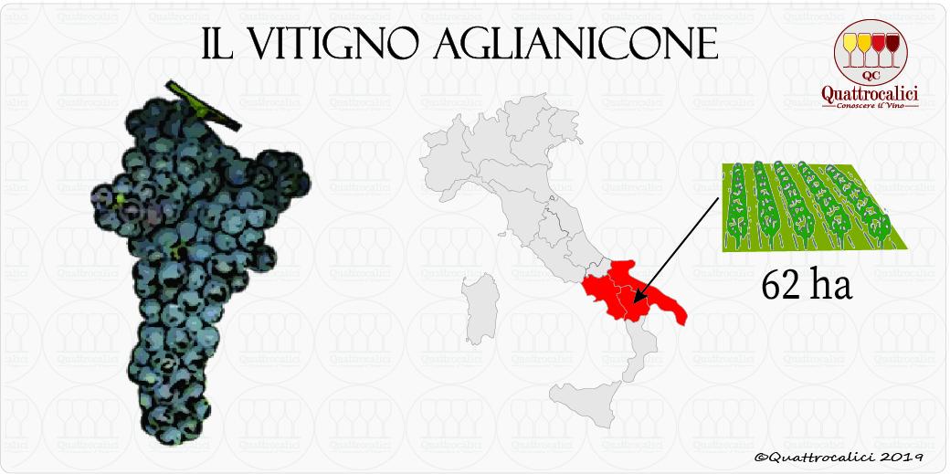 aglianicone vitigno