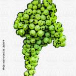 alionza vitigno