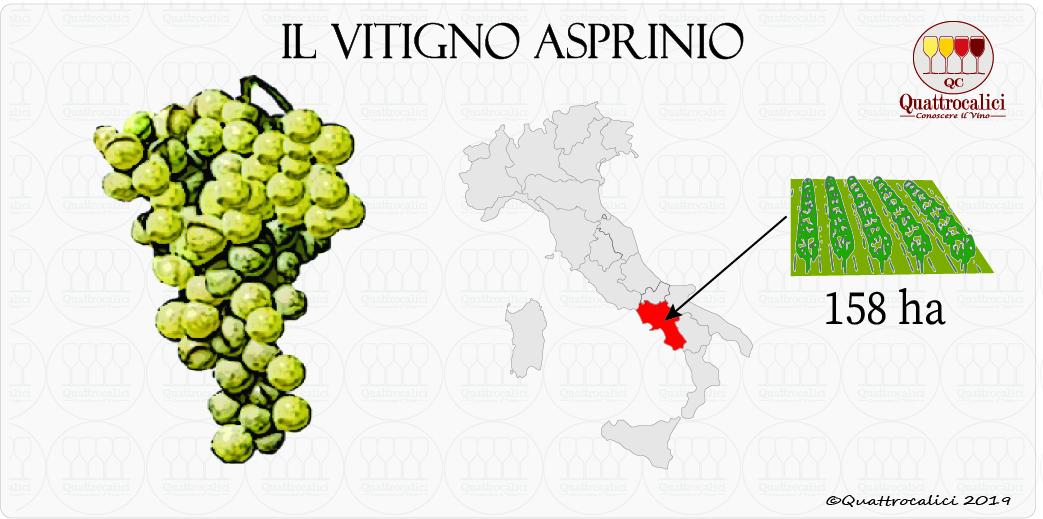 vitigno asprinio