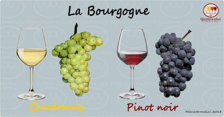 borgogna - i vini