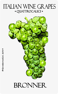 bronner vitigno