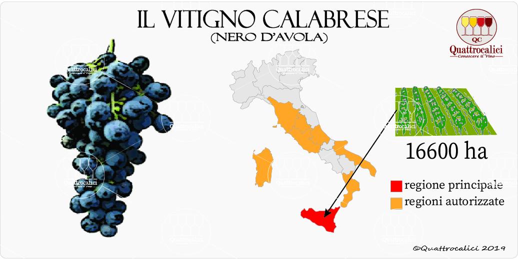 vitigno calabrese-nero d'avola