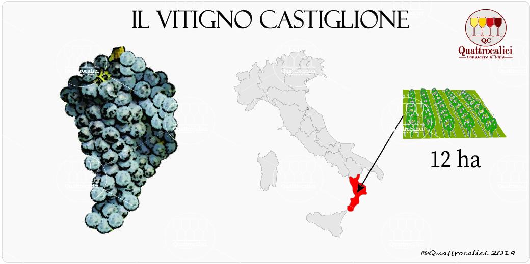 vitigno castiglione