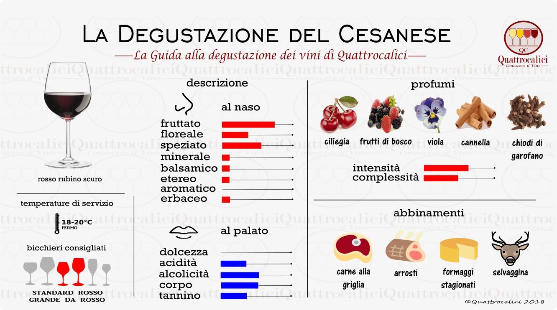 cesanese degustazione vini
