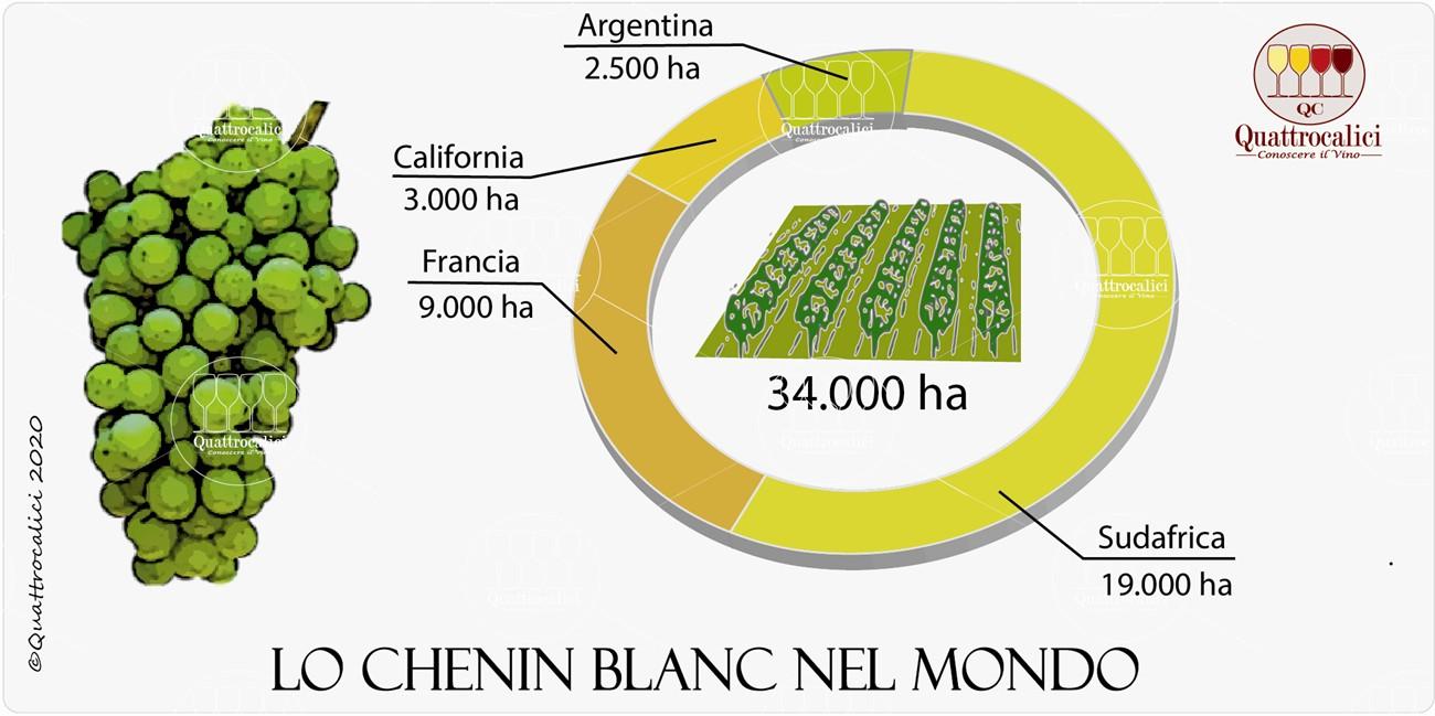 vitigno chenin blanc