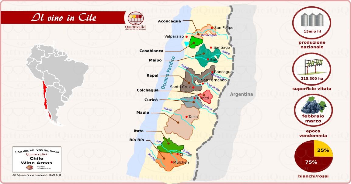 Il Cile e il vino
