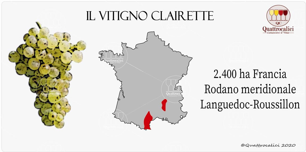 vitigno clairette