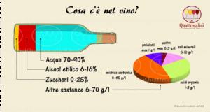composizione-vino