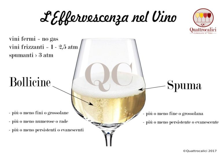 effervescenza e bollicine nel vino