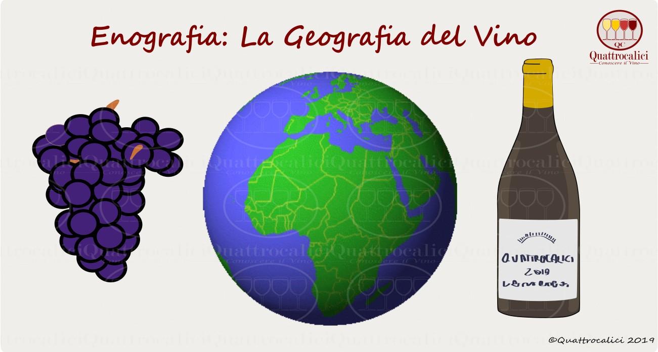 enografia - la geografia del vino