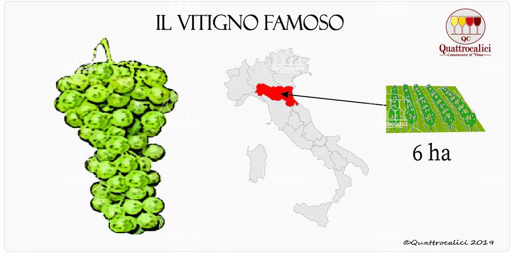 vitigno famoso