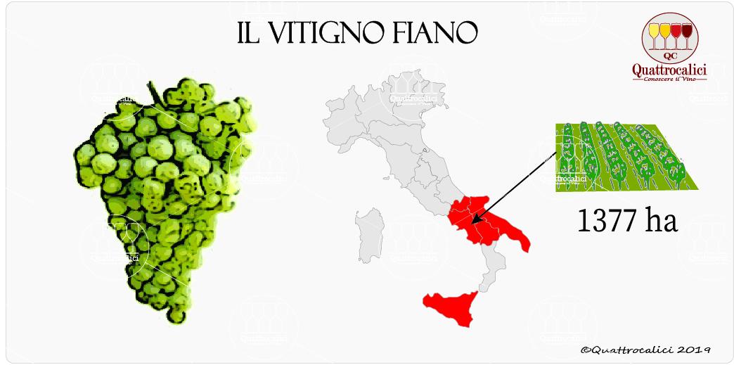 vitigno fiano