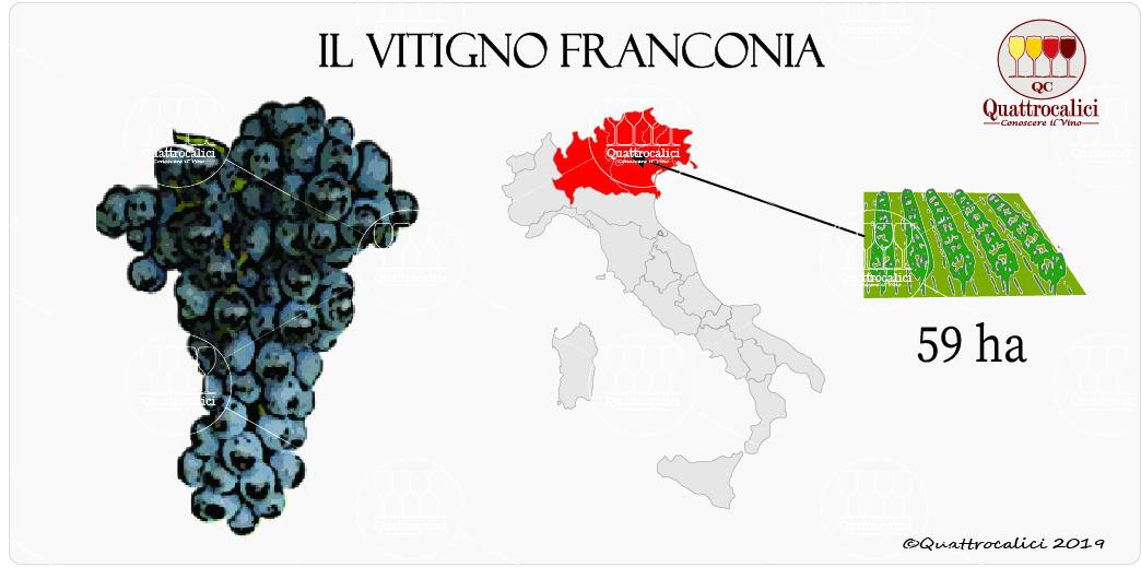 vitigno franconia