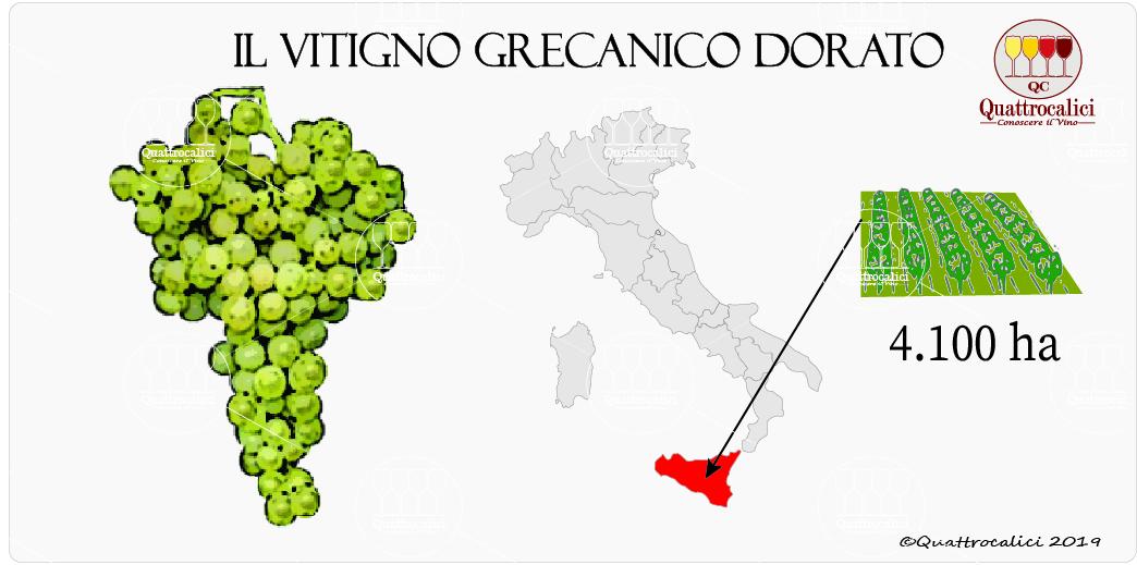 grecanico vitigno